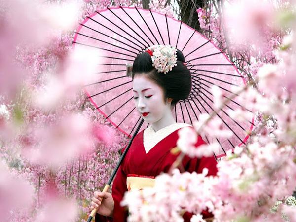 Bạn có biết  - Một ngày của Geisha diễn ra như thế nào?